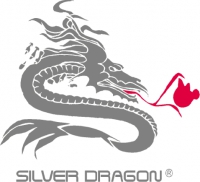 Silver Dragon Resources Inc.
