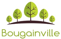 Bougainville Ventures Inc.