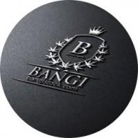 BANGI Inc.