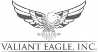 Valiant Eagle Inc.