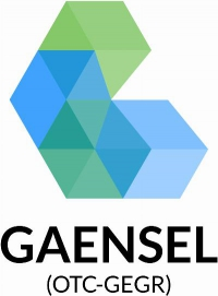 Gaensel Energy Group, Inc.